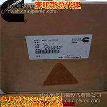 3202268-25燃油泵总成 PT燃油泵(渔检) 重庆CCEC提供/3202268