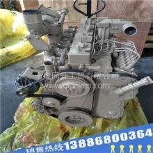 全新康明斯柴油发动机配件四配套C5397330适配工程机械