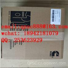 C2871862V型卡箍/C2871862V型卡箍