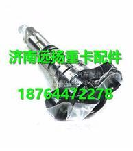 重汽D10发动机高压油泵柱塞总成/VG1095088002