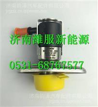 A051X1874387109依米泰克电动喷嘴/A051X1874387109