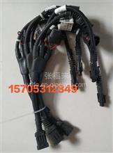 612600061657潍柴原厂电磁离合器器线束/612600061657