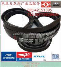 【VG1246060008】陕汽德龙潍柴发动机290马力风扇皮带10PK1451/VG1246060008发动机290风扇皮带