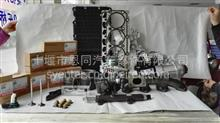 纯正东风天龙雷诺DCI发动机水泵-皮带轮组/D5921510114