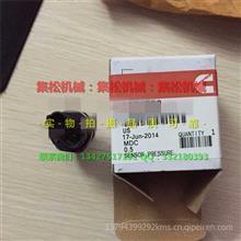 销售康明斯QSM11 连杆螺母 /水泵/QSM11