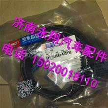 YC80-SPA-1300A   128-1307040玉柴原装水泵皮带/YC80-SPA-1300A   128-1307040