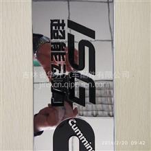 福田欧曼戴姆勒原厂车门标【超能动力】/超能动力