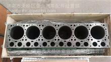 中国重汽豪沃D12喷油器总成厂家直销热卖 豪沃两气门喷油器图片/61560010095