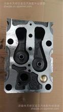 重汽howo豪沃气缸盖陕汽德龙气缸盖总成/AZ1246040011