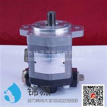 合肥力威上柴助力泵总成/QC18/17-D14