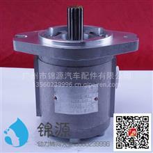 合肥力威助力泵总成/QC38/20-WZ