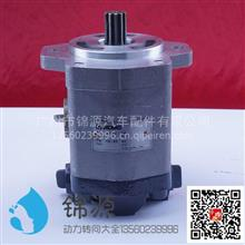 合肥力威徐工吊车助力泵总成/QC25/14-QSC