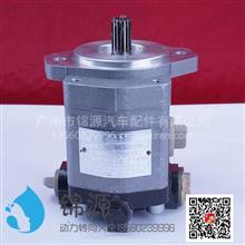 合肥力威上柴助力泵总成/QC20/14-SC7H