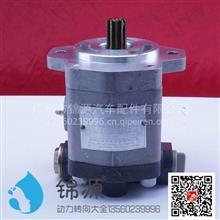 合肥力威上柴助力泵总成/QC20/15-D14A