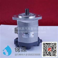 合肥力威徐工吊车助力泵总成/QC25/13-D14A