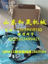 港口堆高机康明斯QSM11/M11喷油器线速2864504/2864504