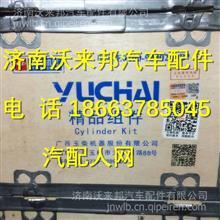 E0200-9000200玉柴4110四配套 /E0200-9000200