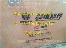 潍柴WP10四配套组件/612600900079A