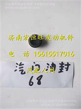 潍柴WD615气门油封/61560040032