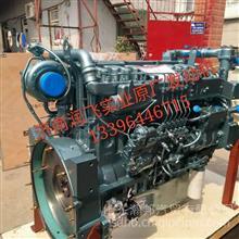 红岩发动机总成 红岩发动机缸体总成 红岩杰狮缸盖价格 /专卖红岩发动机配件