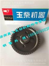 玉柴4108凸轮轴正时齿轮/ D30-1006021