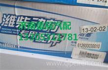 612600030010潍柴欧二发动机活塞/612600030010