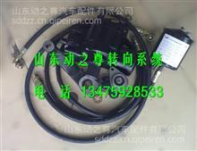 3401CD-010东风尖头140机械改液压方向机总成/3401CD-010