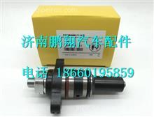 博世柴油系统 CP2.2柱塞电喷油泵柱塞/博世柴油系统 CP2.2柱塞