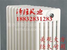 钢制卫浴散热器 衡水泽隆贝迪商贸有限公司/泽隆贝迪
