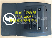 DZ95259959020陕汽德龙X3000后挡泥板总成/DZ95259959020