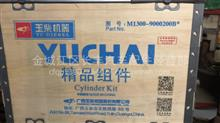 玉柴精品组件/M1300-9000200B
