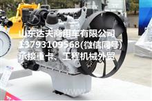 潍柴WP9H290E50国五发动机总成/潍柴中缸机 潍柴短机