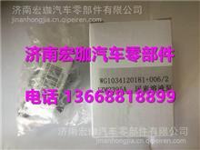 WG1034120181+006重汽发动机尿素溶液泵/WG1034120181+006