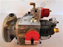 原厂 CCEC  PT   燃油泵 /3655654