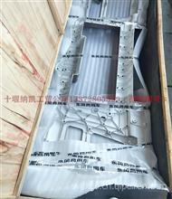 东风天龙旗舰版一体保险杠/8406616-C6100/QD