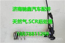 DZ97259740516陕汽德龙国五新款液位传感器带电磁阀