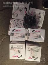 红岩杰狮新金刚杰卡科索发动机修理包C9发动机四配套连杆瓦修理包
