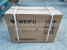 6AW182C/1111000-017-SG6A高压油泵/1111000-017-SG6A