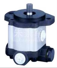 解放双桥王 16T-3助力泵齿轮泵转向助力泵/ZCB-1420L/108