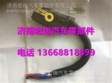 潍柴尿素DCU添蓝控制器插座/潍柴尿素DCU添蓝控制器插座