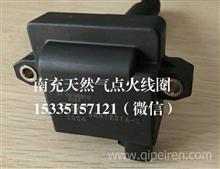 南充天然气发动机点火线圈DQR1231A-D/37.50-05010/DQR1231A-D