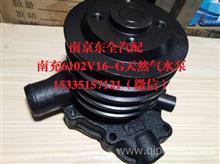 南充NQ150.NQ170.NQ190天然气水泵/1307NQV16-G.NQ6102V16-G