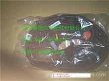 WG1034121061重汽豪沃A7金王子国四发动机尿素泵线束SCR整车线束/WG1034121061