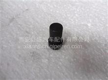 陕汽德龙F3000天然气牵引车钢板销/199000520006