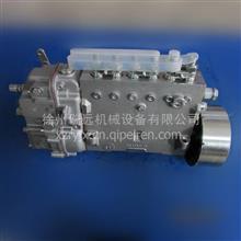 徐工装载机玉柴配件860152109 B7606-1111100A-493喷油器 /860152109