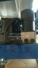 油泵/5005020-C0300