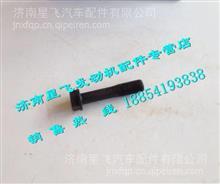 玉柴YC6T连杆螺栓/T9000-1004204