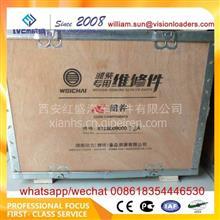 潍柴动力心组件/612600900072A