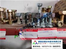 东风日产NT400/N300凯普特轮胎螺丝总成配件厂家销售/H01111