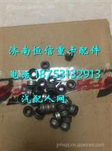 FAT5801496548红岩杰狮c9发动机气门油封/ FAT5801496548